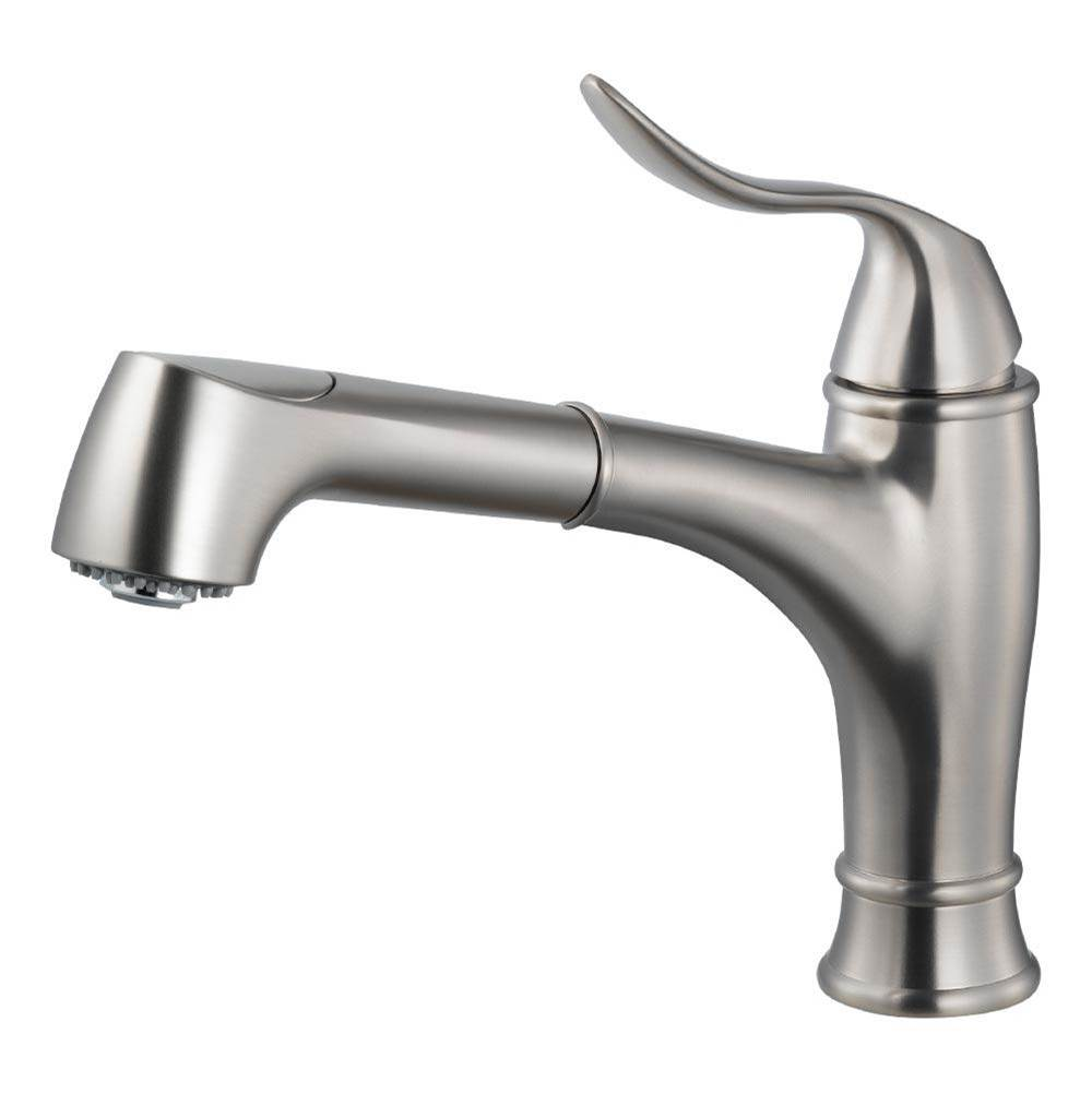 Hamat Dual Function Pull Out Kitchen Faucet in Brushed Nickel