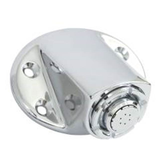 Moen Commercial Chrome showerhead
